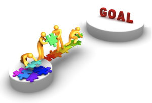 Software Goal Management
