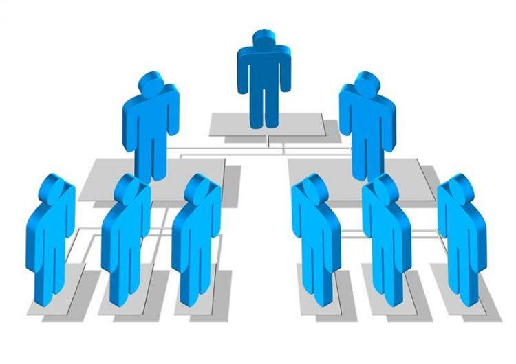 struktur organisasi divisional