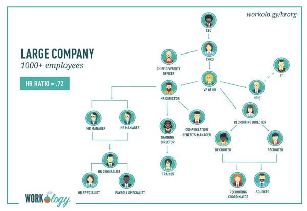 struktur organisasi hrd perusahaan besar