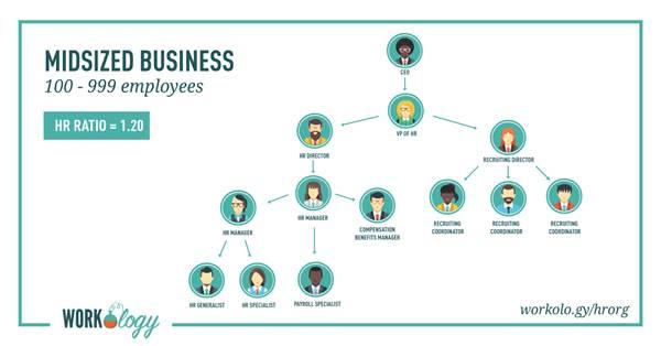 struktur organisasi hrd perusahaan menengah